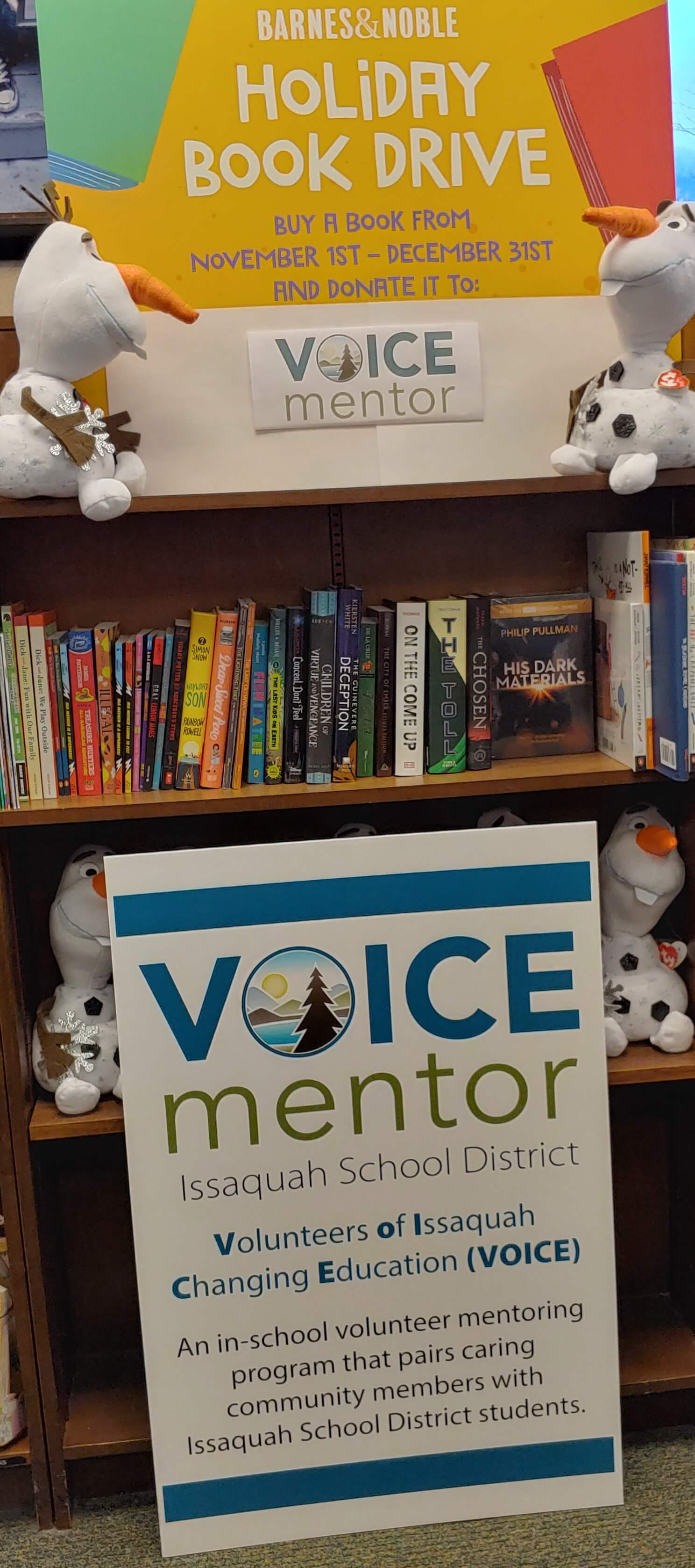 Picture of the VOICE Mentor book drive display
